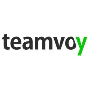 Team Voy